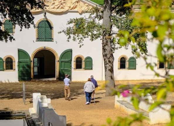 Celebrate International Family Day at Groot Constantia