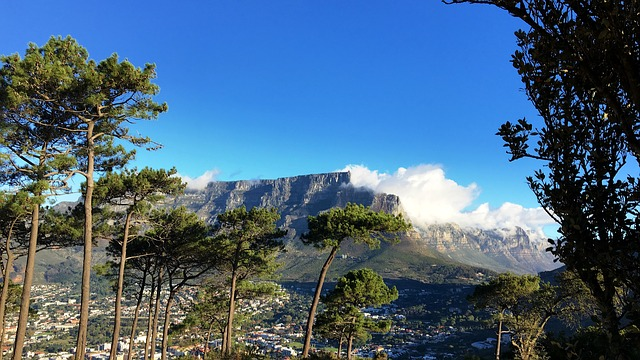 Cape Town wins global Nature Challenge