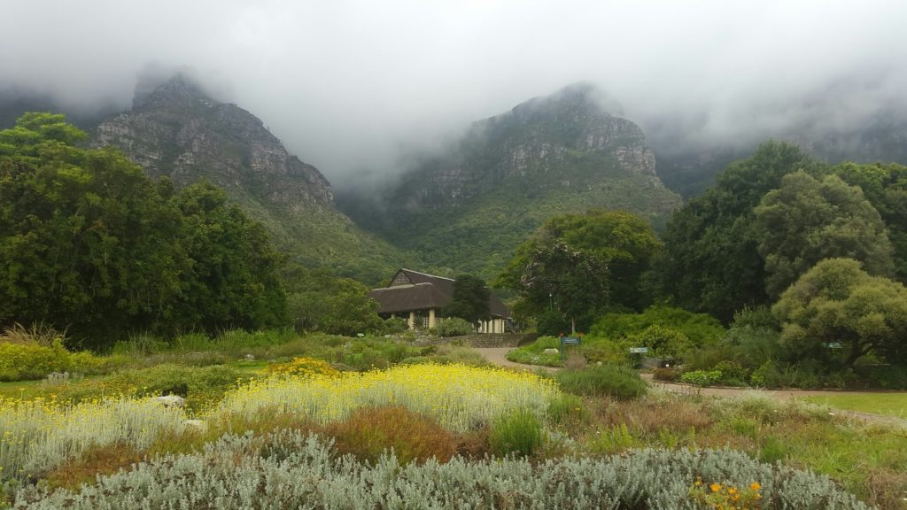 Free entry for kids this winter at Kirstenbosch