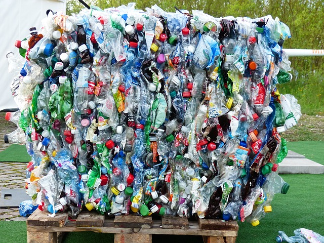Western Cape leads the way in recycling