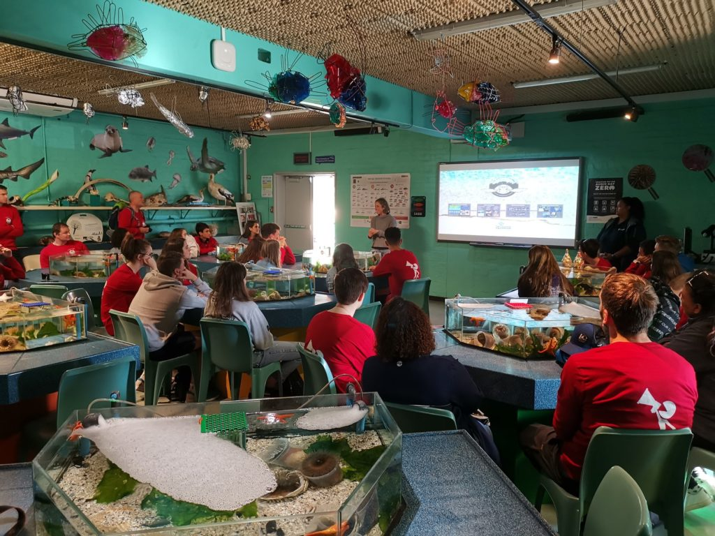 Free Grade 7 sustainability course at Two Oceans Aquarium