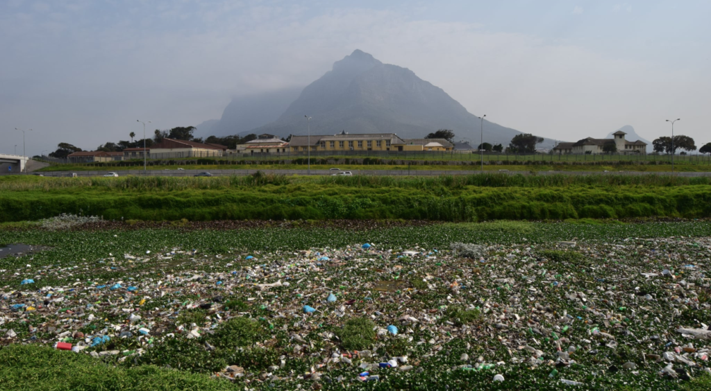 Cape river packed with plastic