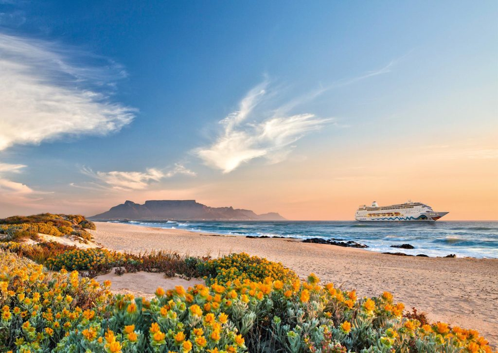 Ships cruising into Cape Town this summer