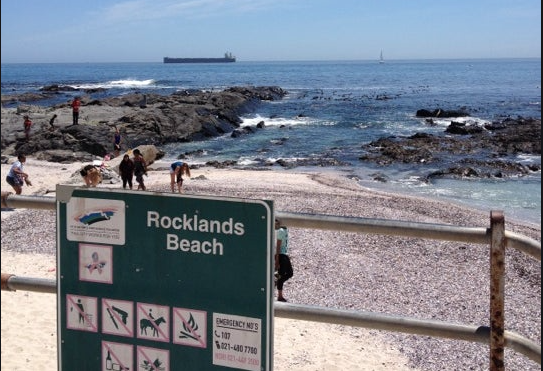 Body seen floating in Sea Point waters