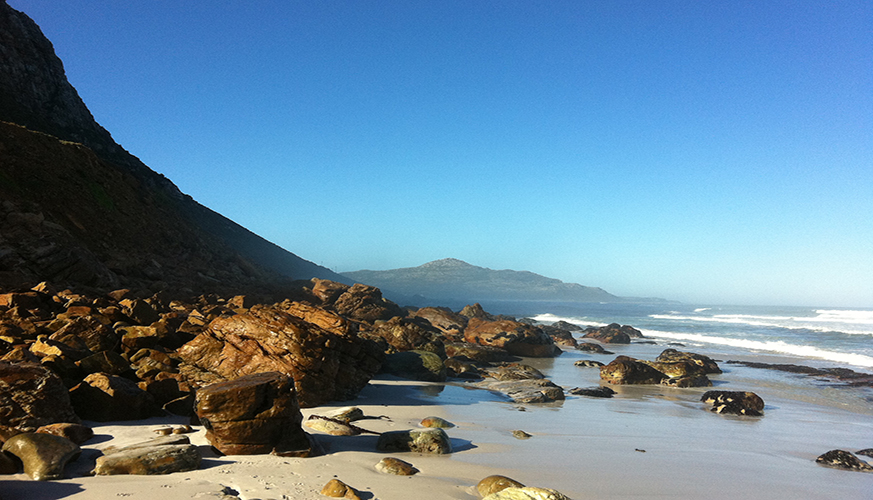 Decomposed body found at Misty Cliffs