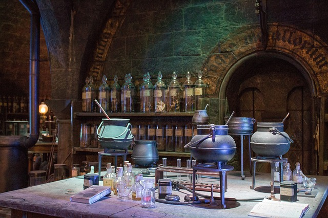World of wizardry comes alive in Cape Town