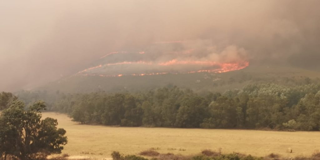 Overberg fire costs R50-million to contain