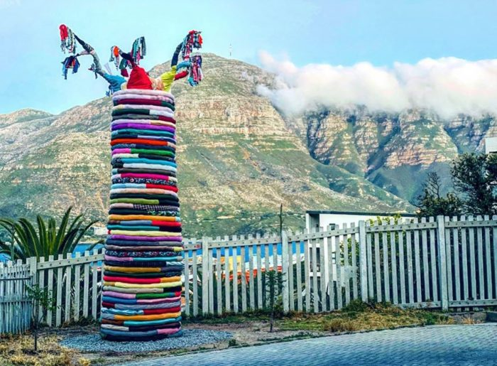 Hout Bay welcomes first EcoBrick tree