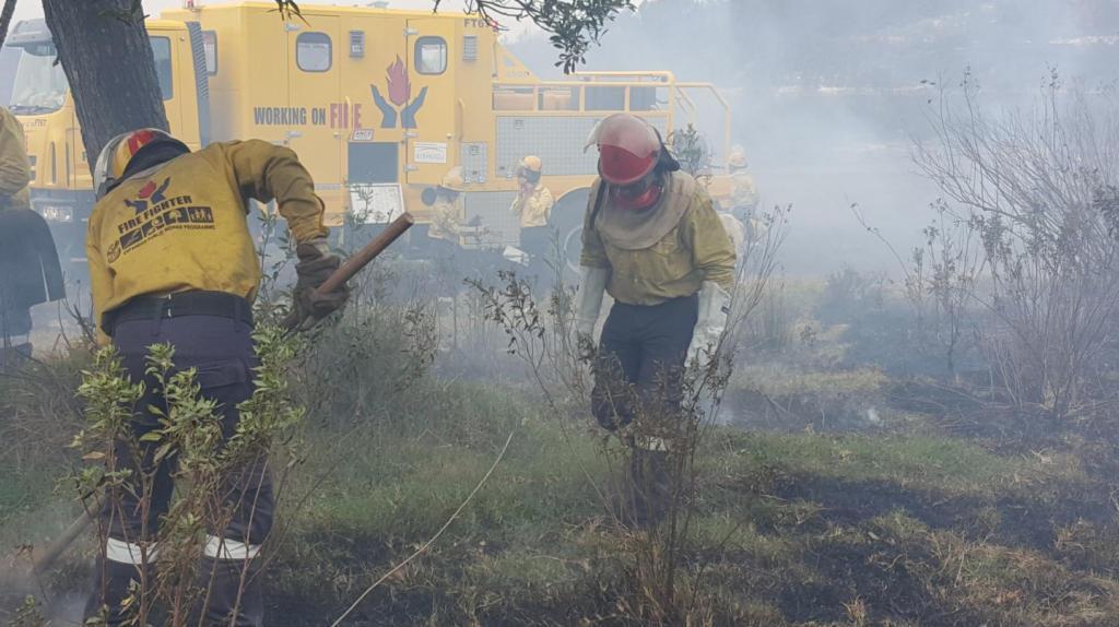 Multiple wildfires rage along N2