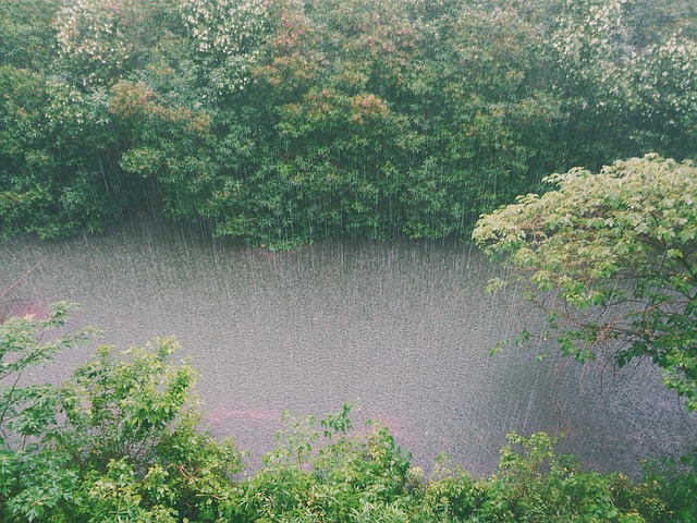 More rainfall for Cape Town