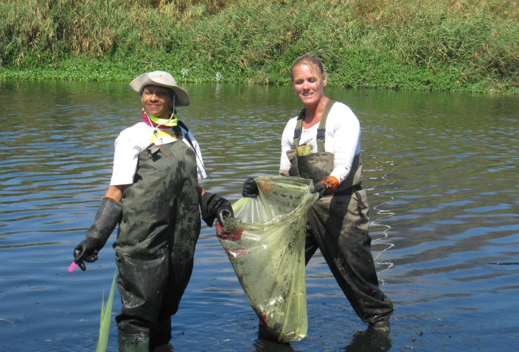 NGO creates 330 jobs by cleaning up river