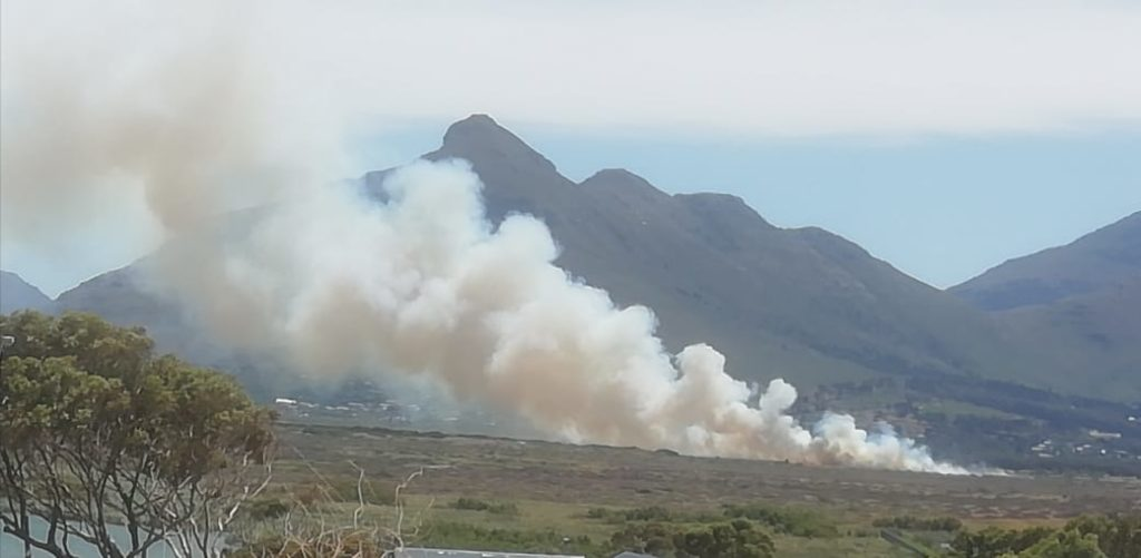 Firefighters tackle Noordhoek wetlands blaze