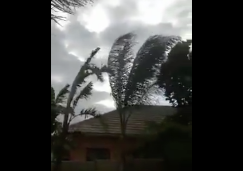 Winds cause more havoc in Cape Town