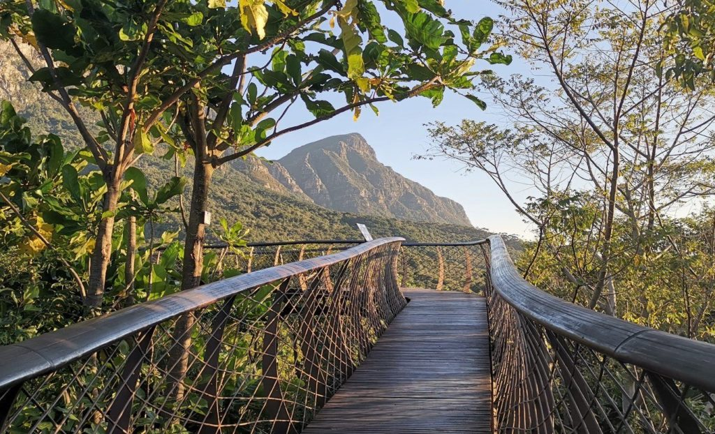 Kirstenbosch extends hours for Valentine's Day