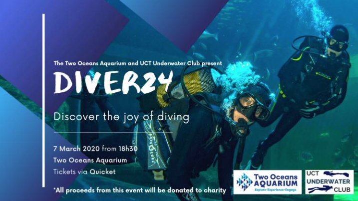 Diver24: Discover the joy of diving