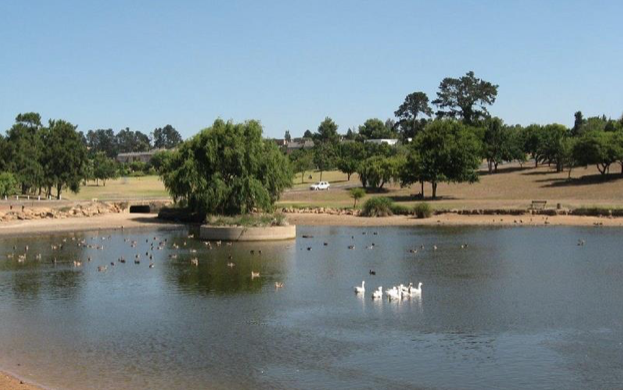 Public to comment on angling at Durbanville dam