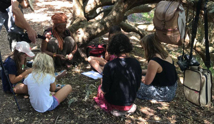 Noordhoek Earth School teaches in nature