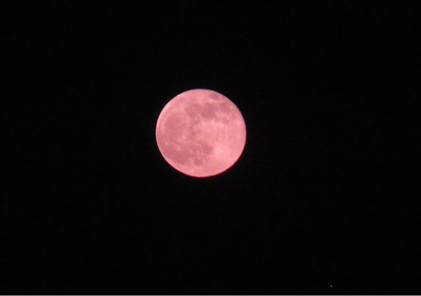 Super Pink Moon to be the biggest of the year