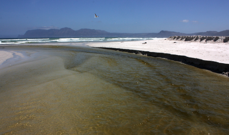 Thirty-one Cape beaches polluted