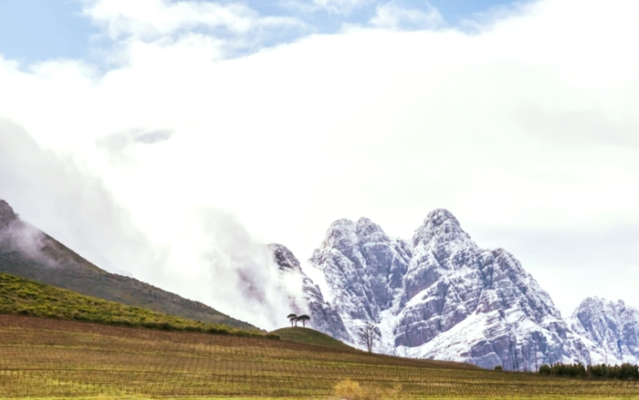 Winelands visitors warned not to travel to see snow