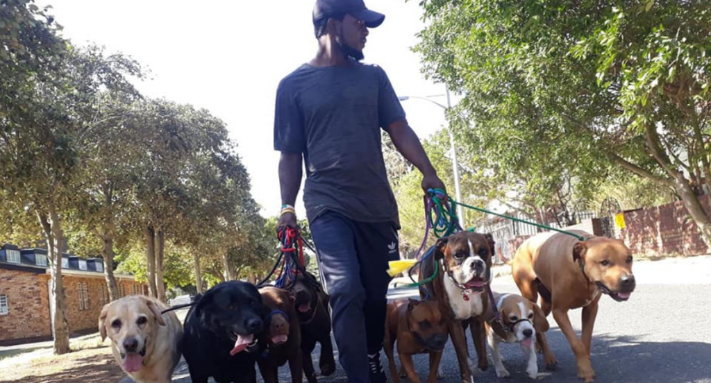 Sea Point community mourn loss of dog walker