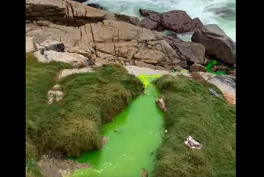 Mysterious green sludge pours into Bantry Bay sea