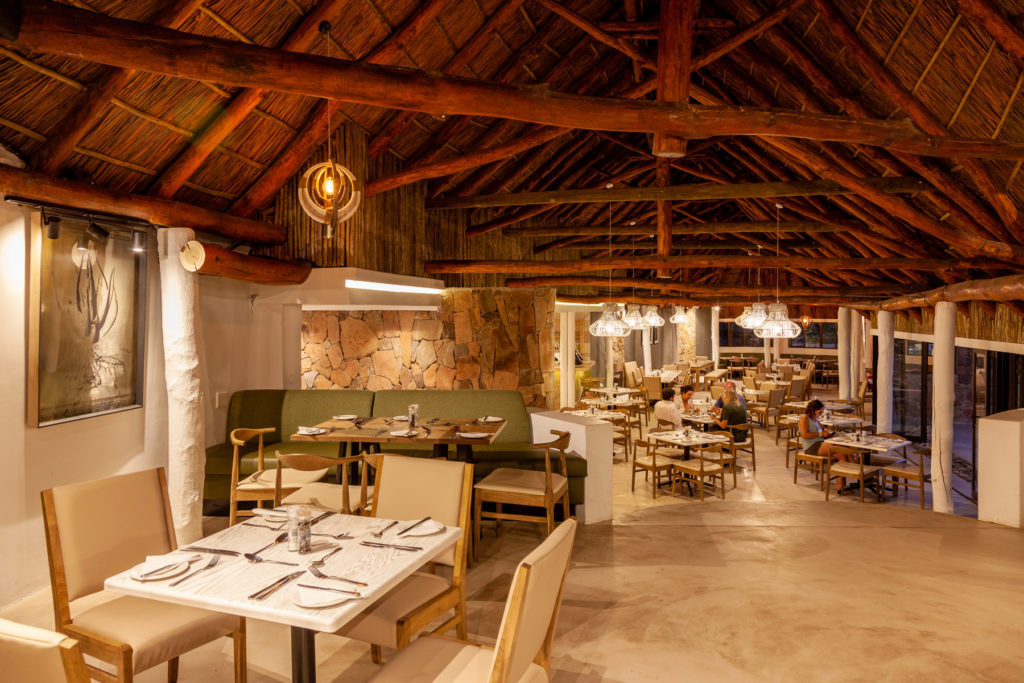 Save now and safari later with Aquila Private Game Reserve & Spa