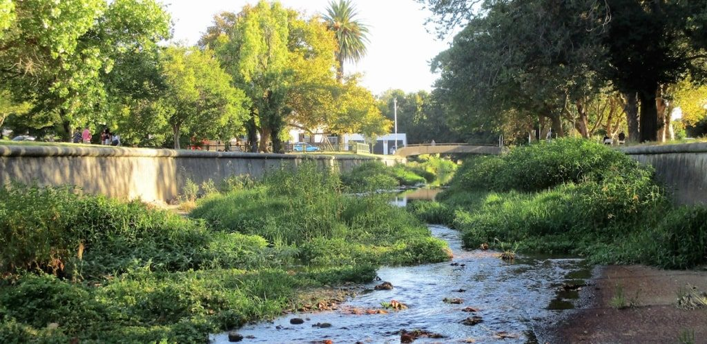 Body of female minor found in Liesbeek River