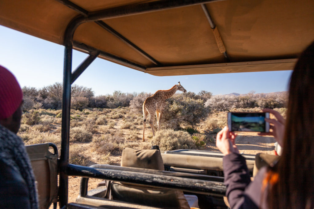 Weekend safari special at Inverdoon from August to September