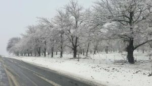 Snow blankets parts of Western Cape - Ceres, Sutherland and Matroosberg