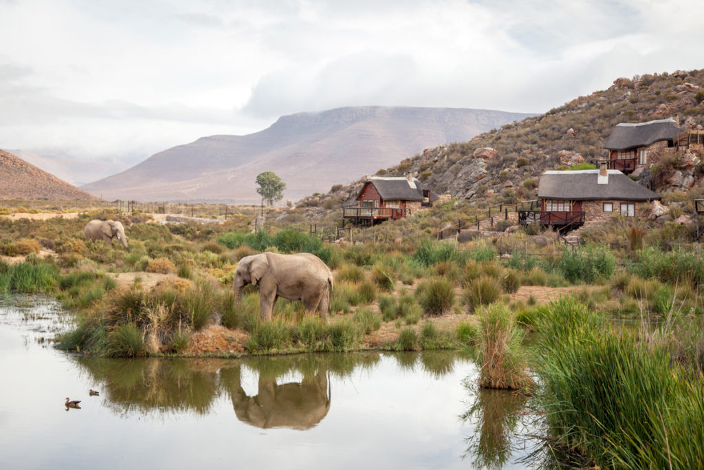 Aquila offers exciting weekend Safari specials