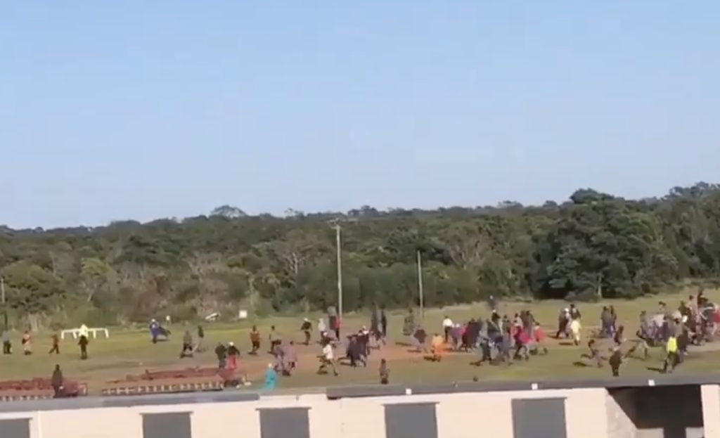 Horse killed, more injured at PE racecourse over employment disputes