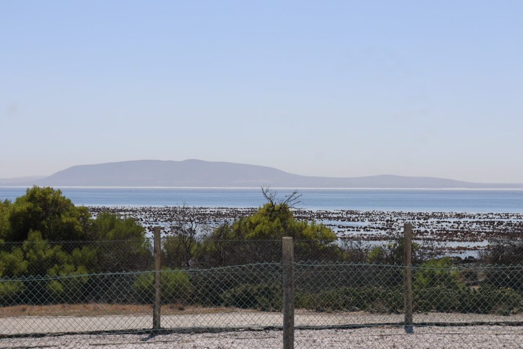 Robben Island Museum to reopen for tours