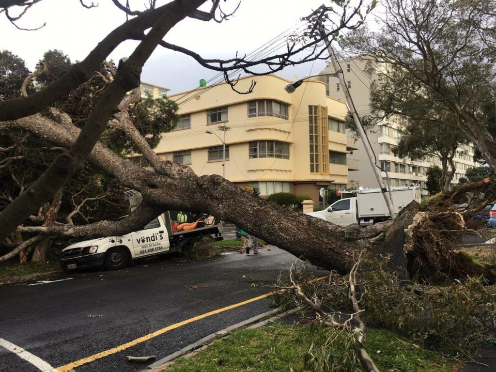 Gale force winds cause destruction in the Mother City