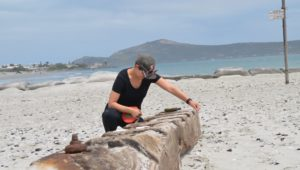 Ship wreckage found in Langebaan