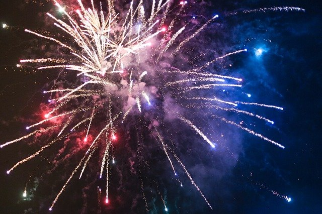 AWS appeals to public to stop Guy Fawkes fireworks