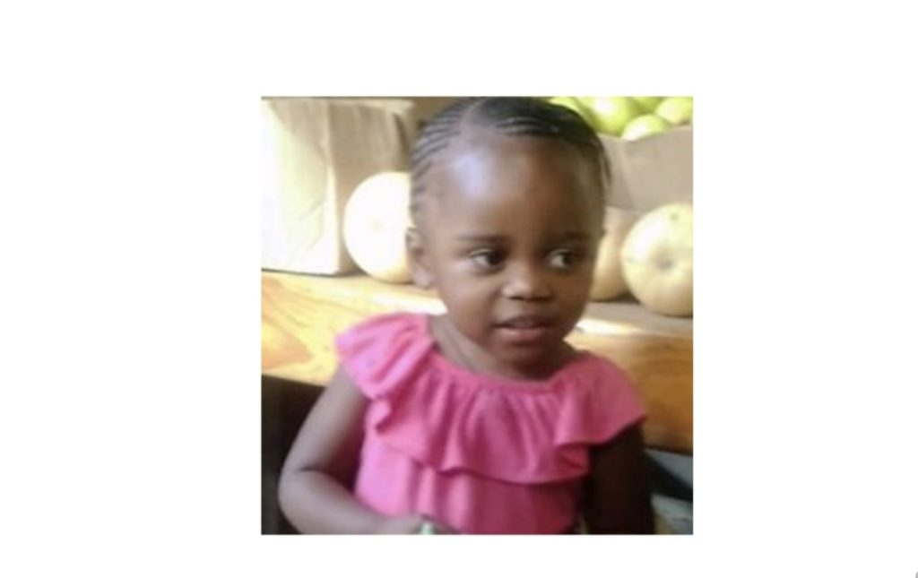 Missing 3-year-old Hout Bay girl
