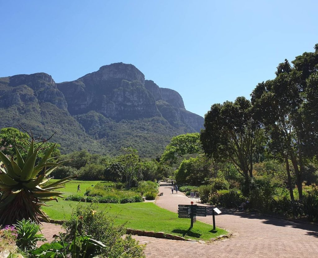 Kirstenbosch named among world's most beautiful botanical gardens