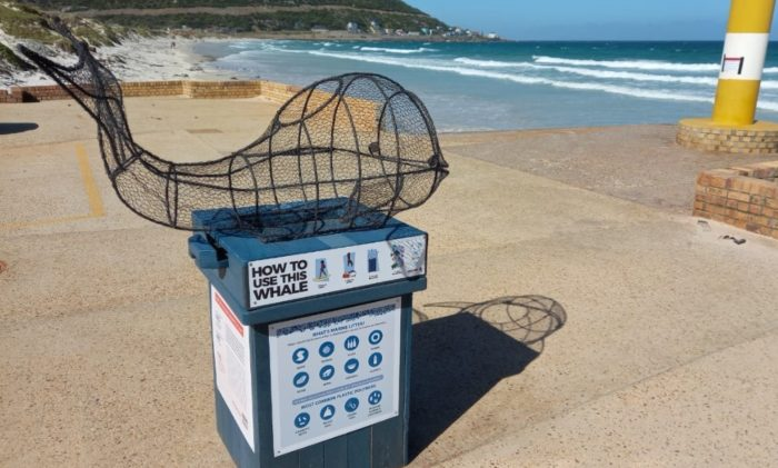 Wire whales come to Fish Hoek beach to encourage recycling