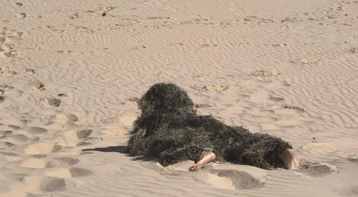 Desperate for the beach? Camouflage yourself