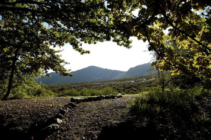 Cape Winelands District, a thousand things to do…and then some wine!