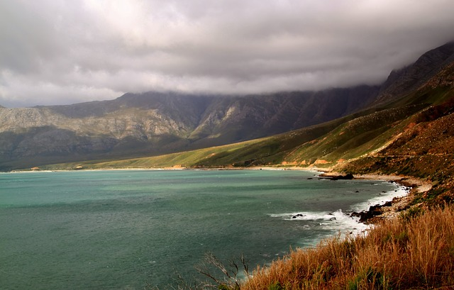 Suggestion of Cape environmental commissioner to be laid before Legislature
