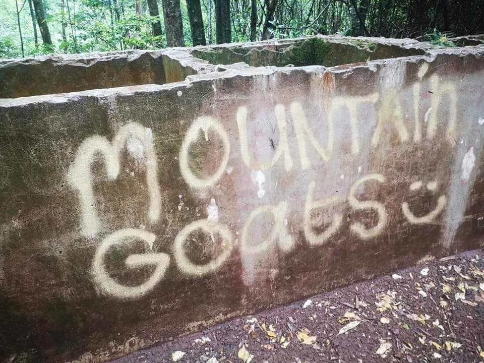 SANParks condemns graffiti in Table Mountain National Park