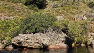 Take a hike: The Krom River Trail