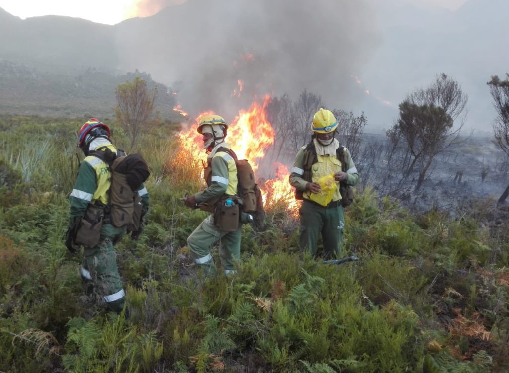 Firefighters battle Grabouw blaze
