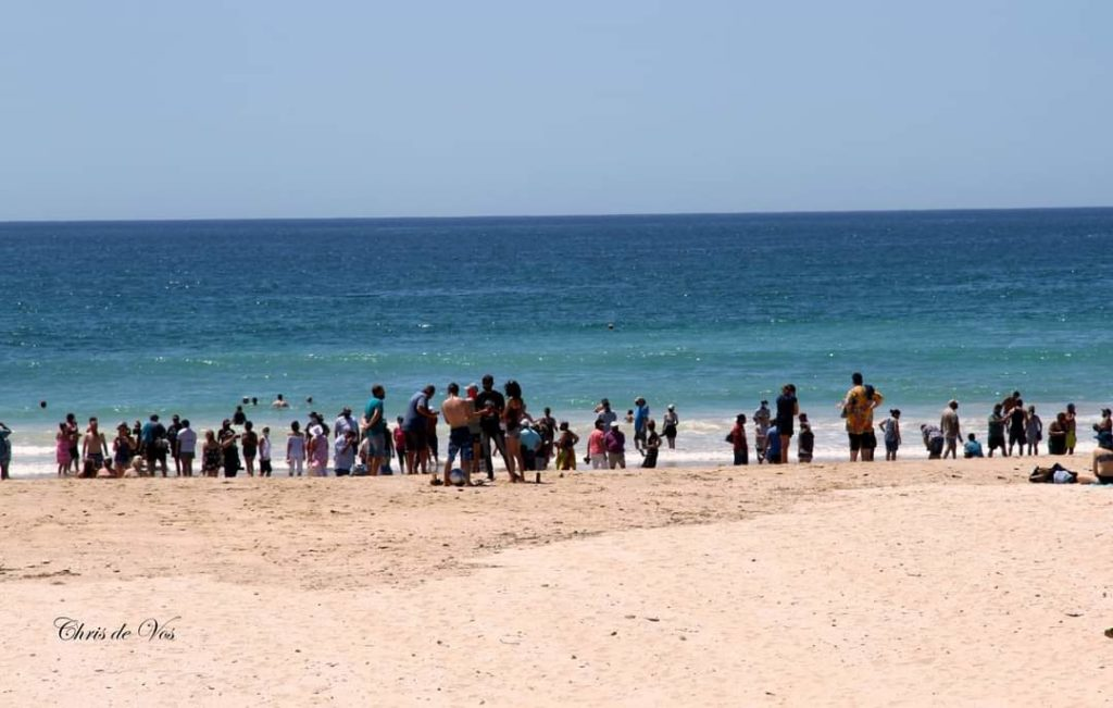 PICTURES: Second beach protest gathers steam