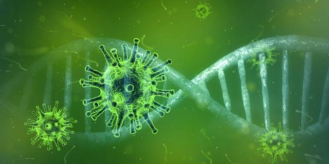 COVID-19 immunity: how long does it last?