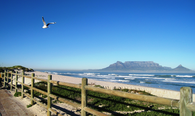 Cape Town residents forced to keep windows closed because of strong stench