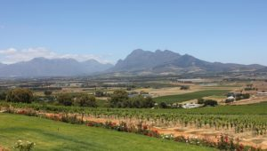 Red Alert Level 10 fire warning issued for Cape Winelands