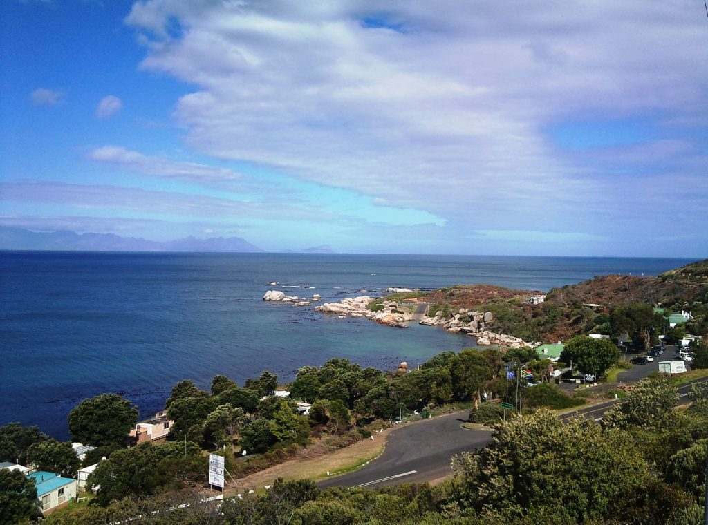 No-waste bin zone trialed at Miller's Point in Simon's Town
